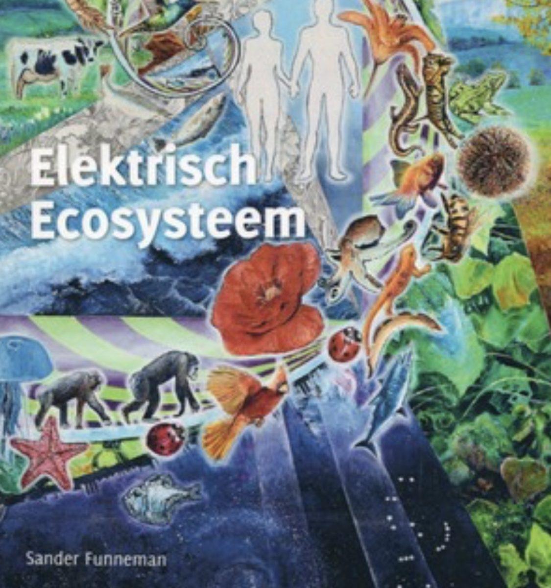 electr eco systeem